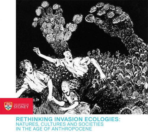 Rethinking Invasion Ecologies