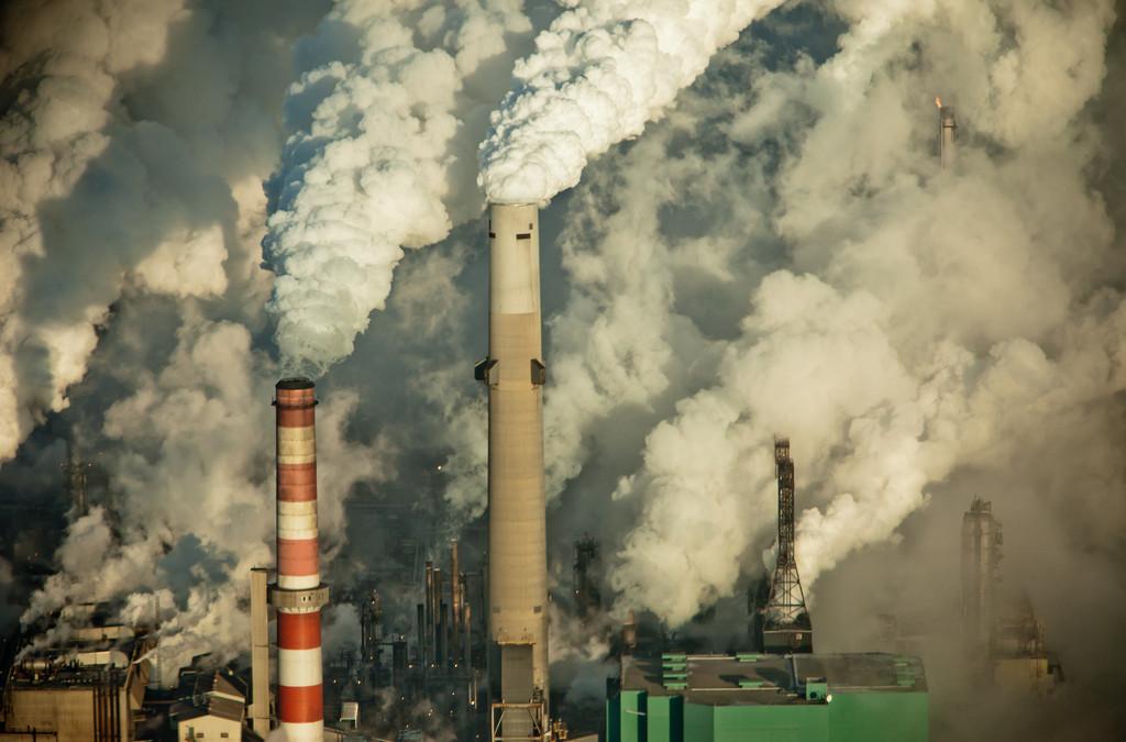 Hosting the 2019 World Congress of Environmental History